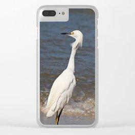 Classy Kinda Sassy Clear iPhone Case