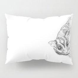 A Sketch :: A Sugar Glider Named Loki Pillow Sham