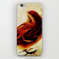 sparrow iPhone & iPod Skins featuring Sparrow by Christine Belanger