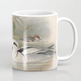 037 Smew mergus albellus4 Coffee Mug