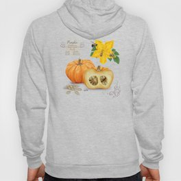 Pumpkin and Pollinators Hoody