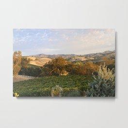 Paso Robles Hills Metal Print