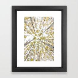 Impermanence Framed Art Print