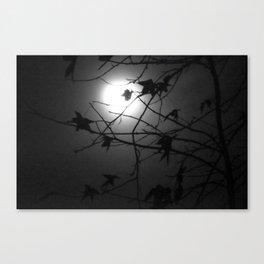 Leaves & Moon Canvas Print