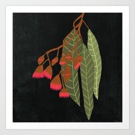 Flowering Gum - Black Art Print