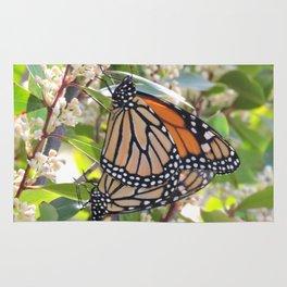 Monarch Mating Rug