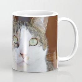 Green-Eyed Cat - Willow Coffee Mug