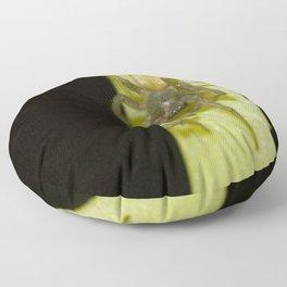 Fuzzy Green Spider Floor Pillow