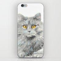 zelda iPhone & iPod Skins featuring Zelda by Priscilla Moore