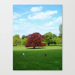 Rustling Red Canvas Print