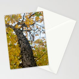 Autumn in the Catskill Mountains Stationery Cards