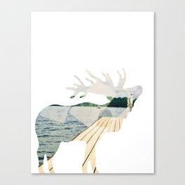 Elk. Canvas Print