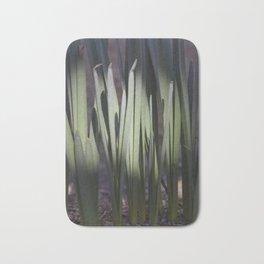 Spring daffodils bulbs in the morning Bath Mat