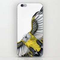 pride iPhone & iPod Skins featuring Pride by Schwebewesen • Romina Lutz