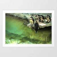 penguins//1 Art Print