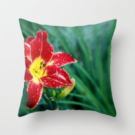 Lily Rain Drops in Red - A macro image with bokah Throw Pillow