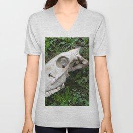 Skull in a field, Photography, animal skull Unisex V-Neck