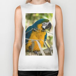 Parrots couple in the tree tops Biker Tank