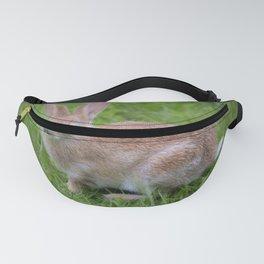 Bunny Fanny Pack