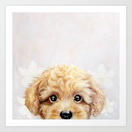 Toy poodle Dog illustration original painting print Art Print