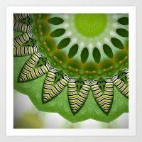 Monarch Caterpillar Kaleidoscope Art Print