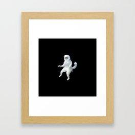 Persian Cat Framed Art Print