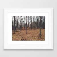 indiana Framed Art Prints featuring Indiana Forest by Kurt Rahn