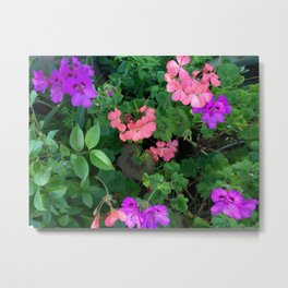 Pink and purple garden Metal Print