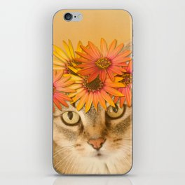 Tabby Cat with Daisy Flower Crown, Mustard Yellow Background iPhone Skin