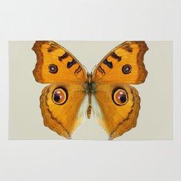 Meadow Argus Butterfly Rug