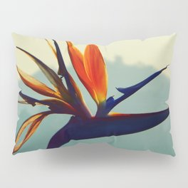 Portrait of Paradise Pillow Sham