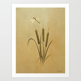 Cattails And Dragonfly Art Print