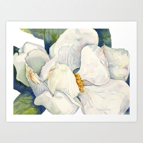 Magnolia Full Bloom by cindylouillustration