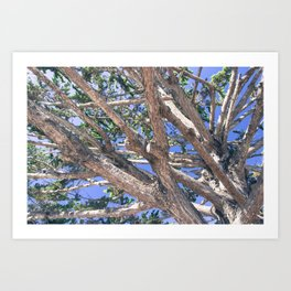 Trees and branches Art Print