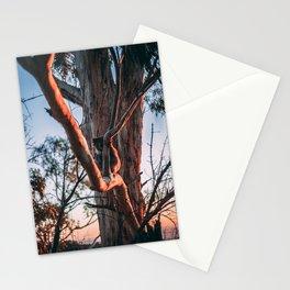 Koala at Sunset Stationery Cards