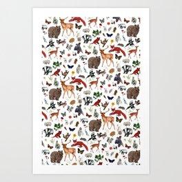 Wild Woodland Animals Art Print
