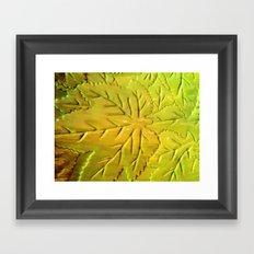 Green Gloss Leafs Framed Art Print
