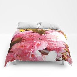 Pink Sorbet Comforters