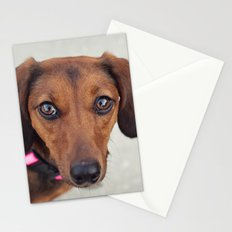 Doxie Dares You  Stationery Cards