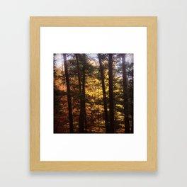 Autumn Along the Gorge Framed Art Print