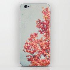 Cheerful Spring iPhone & iPod Skin