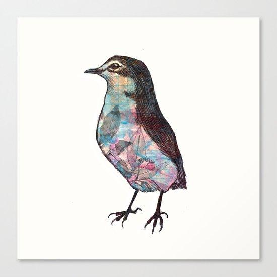 Little Bird.  Canvas Print