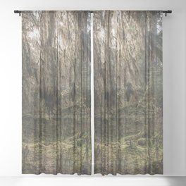 Rainforest Adventure - Nature Photography Sheer Curtain
