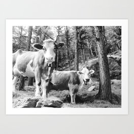 Swiss Alps Mountain Cows Art Print
