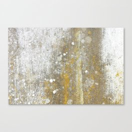 Wall Painting from Nature Canvas Print