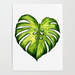 Monstera leaf in watercolor Poster