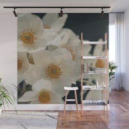 Anemone On Black Wall Mural