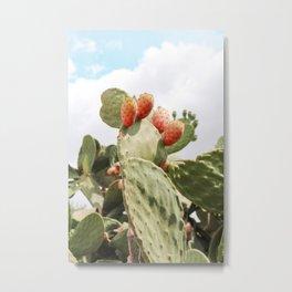 Prickly Pear Summer Metal Print