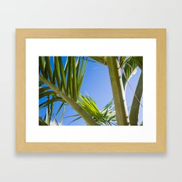 Beryl Framed Art Print