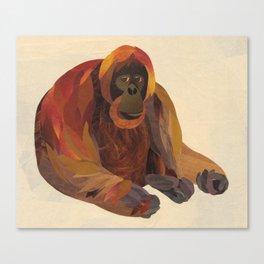 The Orangutan Canvas Print